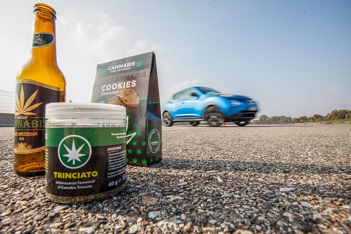 Cannabis in cucina e alla guida: il nostro test con Quattroruote