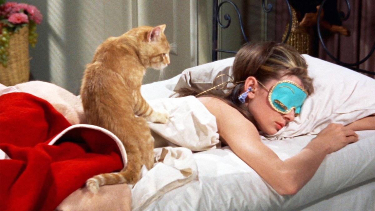 Ecco tutti gli ingredienti e i comportamenti che ti faranno dormire bene