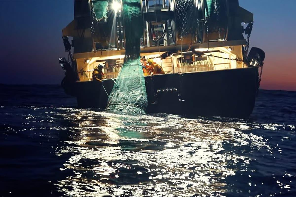 Abbiamo visto Seaspiracy, il documentario di Netflix sulla salute del mare (che non se la passa bene)